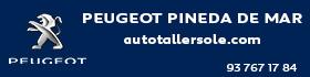 BL-020T17 - Peugeot - Auto Taller Solé