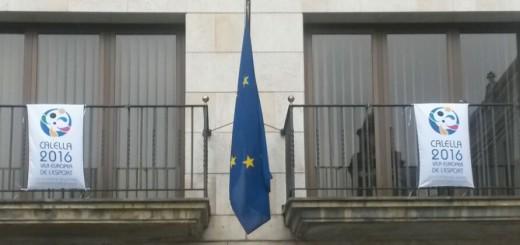 BANDERA EUROPEA MIGPAL
