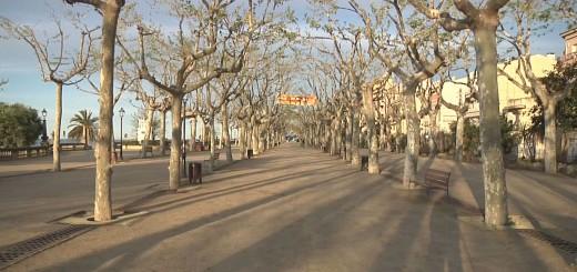 Passeig Manuel Puigvert, arxiu
