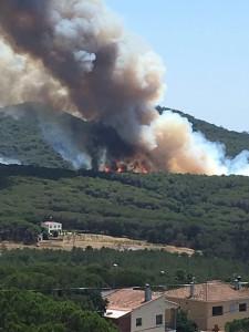 incendi_blanes_vilar