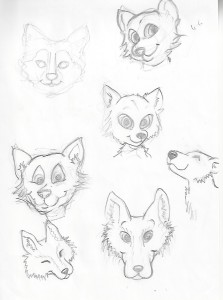 Wolf-proces-1
