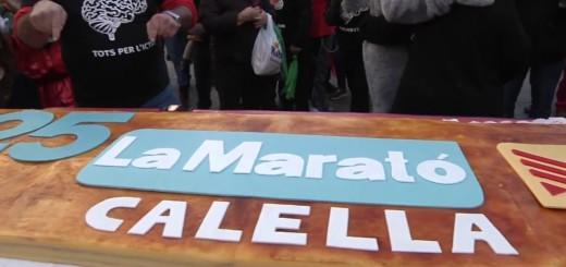 Pastís d'aniversari del 25è aniversari de La Marató