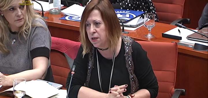 Candini interverint en la sessió de debat sobre el projecte de llei de pressupsotos del 2017