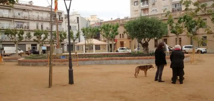 plaça_catalunya_obres_participatius_font_gossos