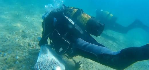 Neteja fons marí per club esportiu subaquàtic calella