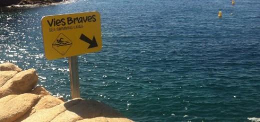 vies_braves