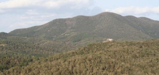 Paratge del massís del Montnegre i Corredor en una imatge d'arxiu