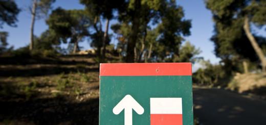 parc_serralada_litoral-_aprop_del_corredor-6037