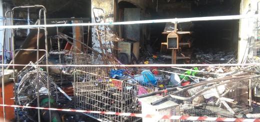 Aquest és l'estat en què va quedar el local que es va cremar divendres a la tarda