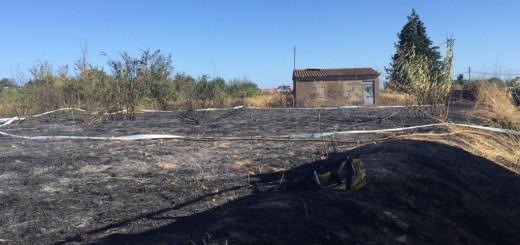 Imatge de la zona cremada a Pineda de Mar, el 3 de juliol