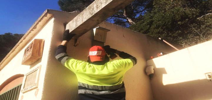 Operari municipal col·locant una de les caixes-niu per a ratpenats
