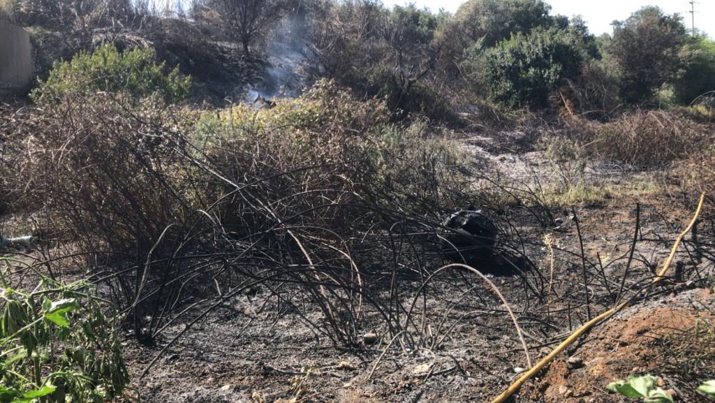 foto_incendi_forestal