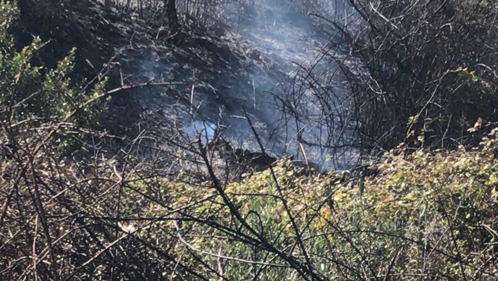 foto_incendi_forestal2