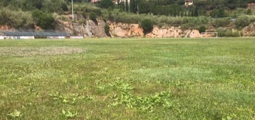 Camp de gespa natural de la Zona Esportiva de La Muntanyeta