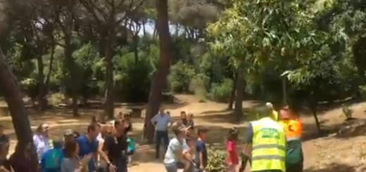 Plantada Castenyer 90 anys parc Dalmau