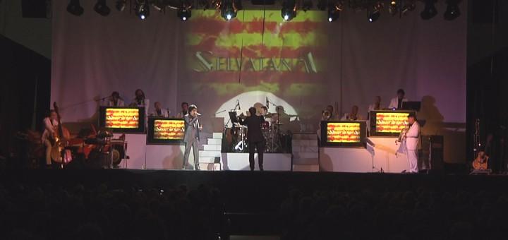 Concert solidari de l'Orquestra Selvatana durant la Festa Major del 2015