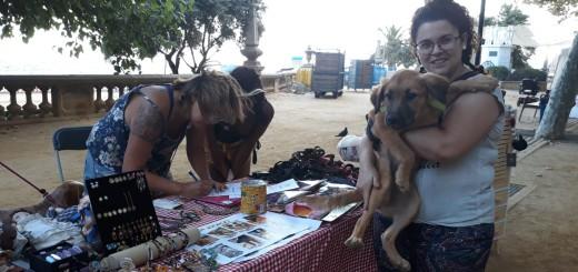 La parada de Salvando Peludos a la Fira Animalista, on han donat en adopció tres gossos