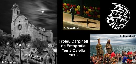 carpinell2018