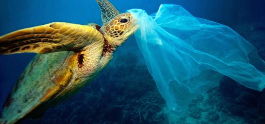 plastic fons del mar
