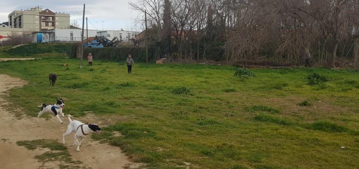 Terrenys on es crearà la zona d'esbarjo per a gossos a Poblenou