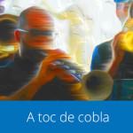 a_toc_de_cobla_quadre