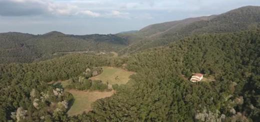 Montnegre