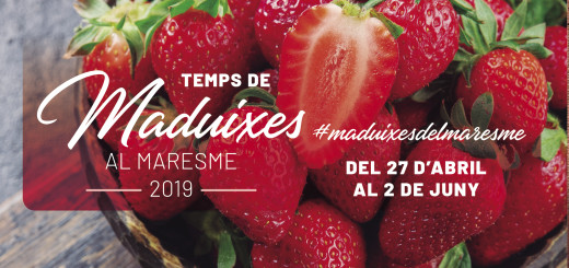 TEMPS DE MADUIXES