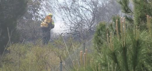 [Vídeo] Un incendi crema una zona forestal a tocar de l'autopista entre Calella i Sant Pol