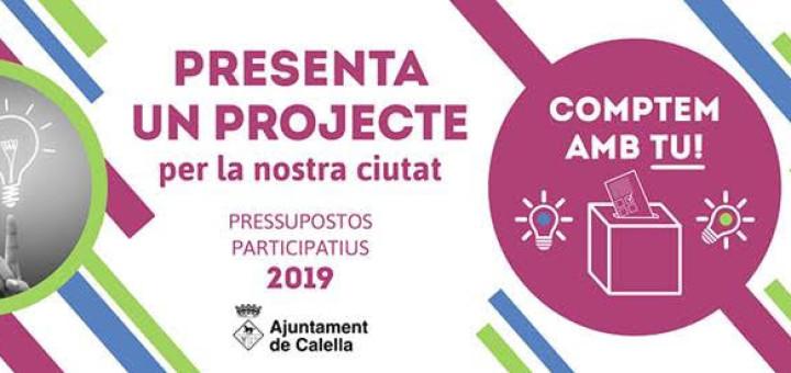 PRESSUPOSTOS-2019