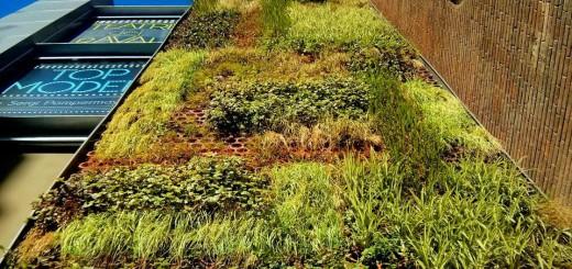 jardí vertical raval