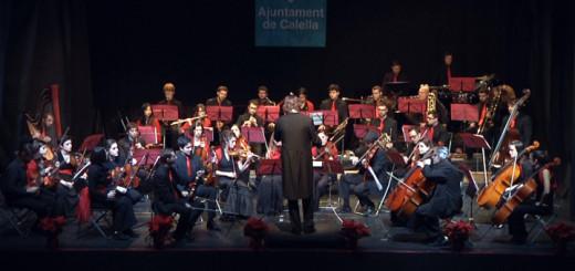 cor harmonia