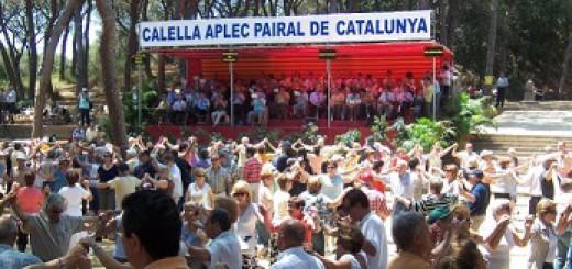 Aplec 2009 1a