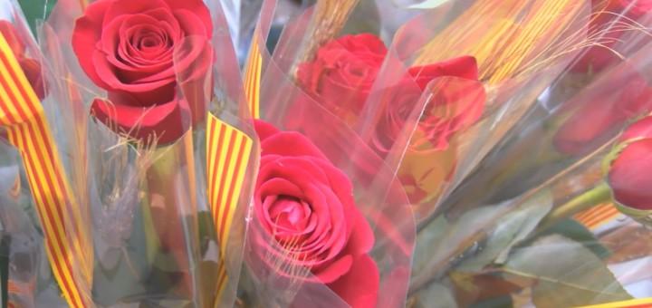 Roses00000000