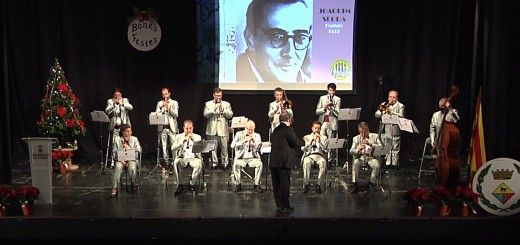 concert_sardanista_2020