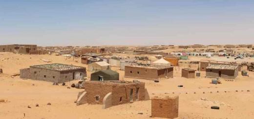 sahara campaments(1)