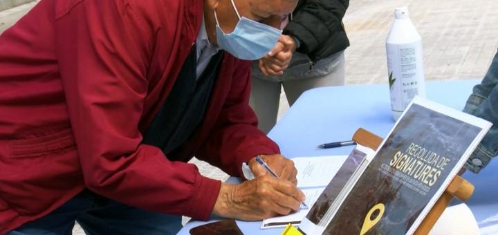 signatures consulta gossos web ok