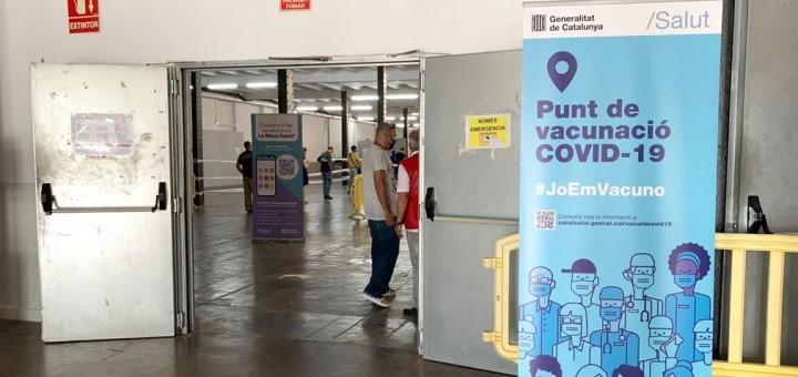 entrada vacuna