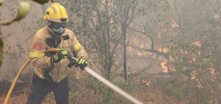 Bomber treballant en les tasques d'extinció de l'incendi del passat 24 de juny a Argentona (Foto: Bombers de la Generalitat)