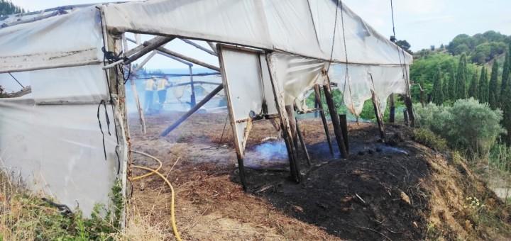 L'incendi va afectar una àrea de matolls i part d'un hivernacle propietat de la família de floristers Bancells (Foto: Policia Local)