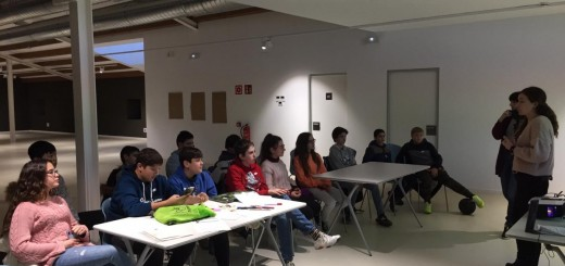 Consell d'Adolescents 2020.